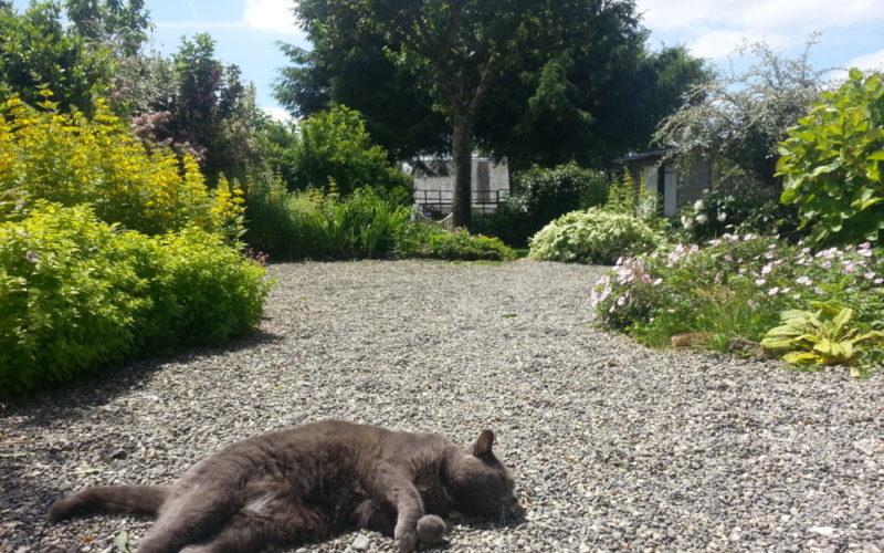 Le jardin de la Maison Launay, chambres d'hôtes au coeur de la Normandie