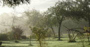 Le jardin de la Maison Launay
