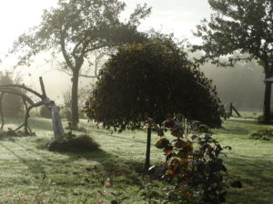 Jardin givré La Maison Launay