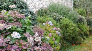 Jardin fleuri La Maison Launay, chambres d'hôtes au coeur de la Normandie